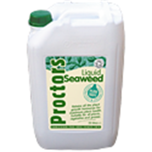 Picture of Proctors 'Cold Pressed' Liquid Seaweed 5 litres